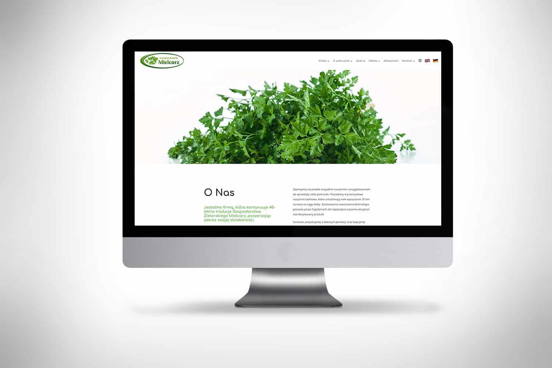 strona www dla suszarni warzyw